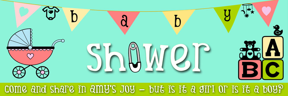 baby shower theme party planner