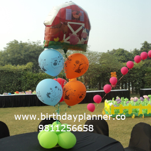 Barnyard theme party outdoor decorator