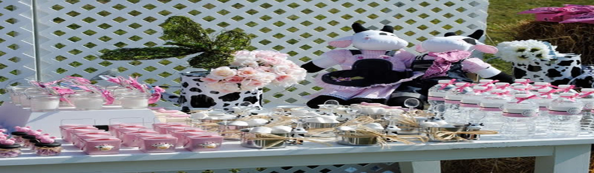 cowgirl theme party planner