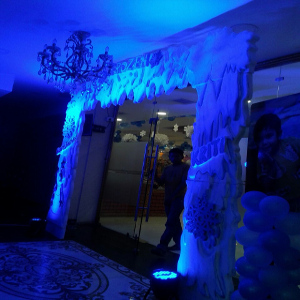 girls theme party decoration in delhi