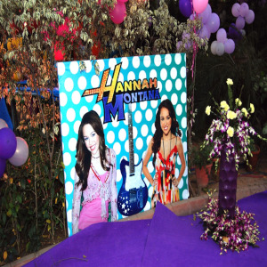hannah theme party planner for birthday party