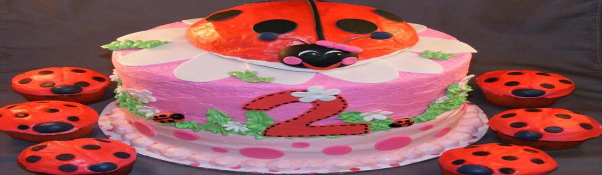 ladybug theme party planner delhi
