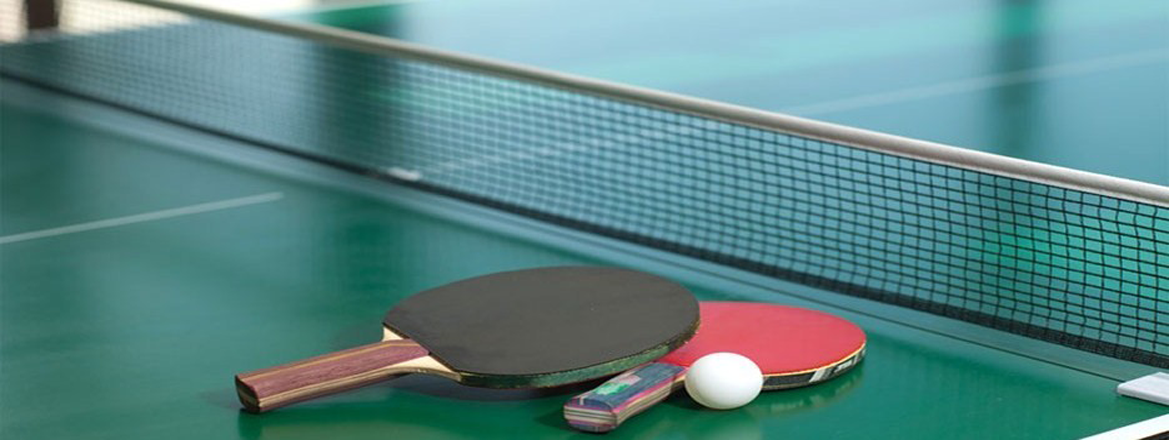 table tennis table on rent in delhi