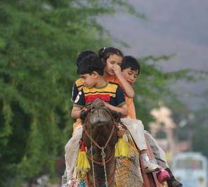 camel ride for children's