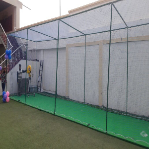 cricket set up for party