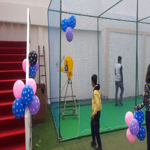 cricket theme birthday party