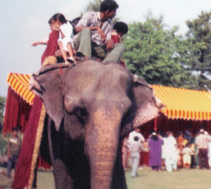 elephant ride for kids birthday party