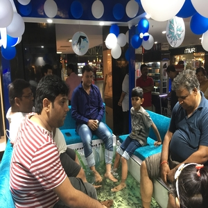 fish pedicure for kids party