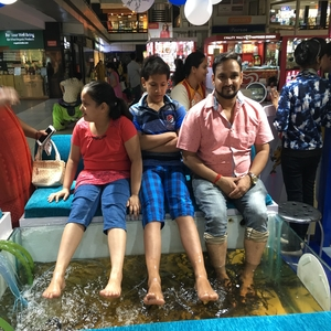 fish spa on rent in india