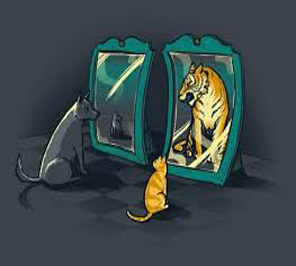 funny mirror for festival