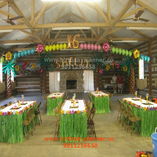 hawaii party for youngster