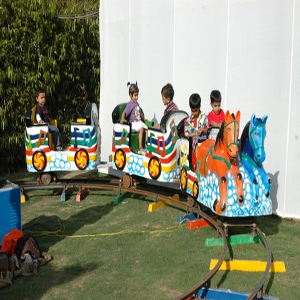 horse train for kids birthday party