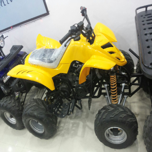 petrol quad bike on rent