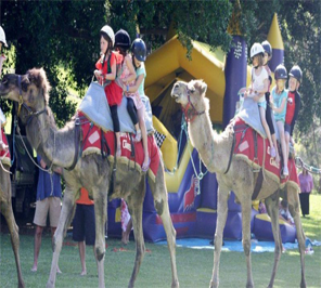 camel ride in delhi