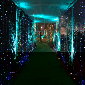 event management planner in delhi