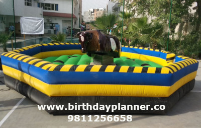 bull ride for hire